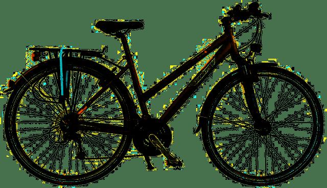 Bbf trekking bike ottima per viaggi in Sicilia